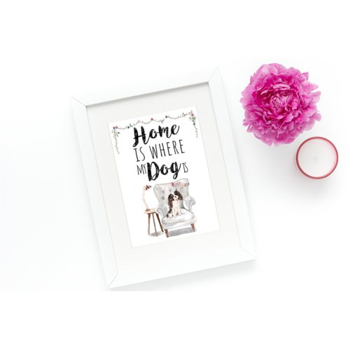 Home is where my dog is - Spaniel